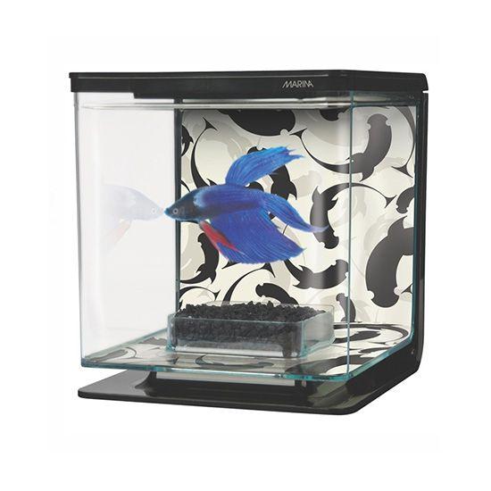 סט לגידול דג קרב - פנג שואי נפח 2 ליטר-0