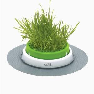 קט איט סנס 2.0 כלי לגידול דשא לחתולים-0