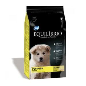 """מזון לכלבים אקווליבריו פאפי מדיום 15 ק""""ג-0"""