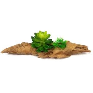 קישוט לאקווריום גזע עם צמחים