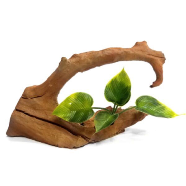 קישוט לאקווריום גזע עץ עם צמח